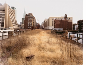 Featured image is reproduced from 'Joel Sternfeld: Walking the High Line.'