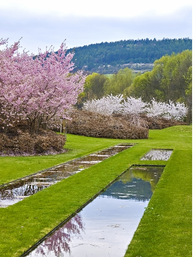 Just in time for Mother's Day: The Wirtz Gardens III