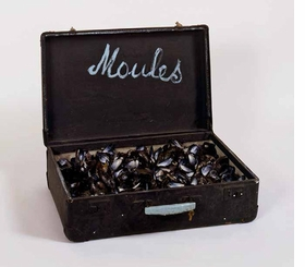 """Featured image, <I>Valise """"Moules""""</I> (1965), is reproduced from <I>Marcel Broodthaers</I>."""