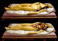 Morbid Valentine: 'The Anatomical Venus: Wax, God, Death & the Ecstatic'