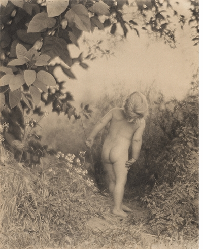 NEW! Edward Weston: The Early Years