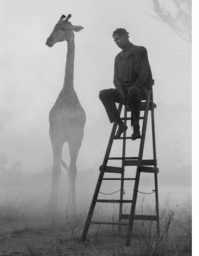 Featured image is reproduced from 'Nick Brandt: The Day May Break'.