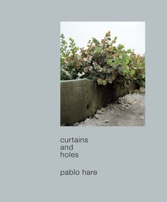 Pablo Hare: Curtains and Holes