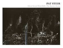 Pat Steir: Silent Secret Waterfalls