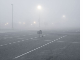 """Featured image, reproduced from <I>Petrochemical America</I>, is Richard Misrach's 2010 photograph, """"Shopping Cart, T Plate 48 anger Factory Outlet Center, I-10, Gonzales, Louisiana."""""""