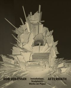 Rob Voerman: Aftermath