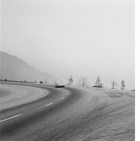 Featured image is reproduced from 'Robert Adams: Los Angeles Spring.'