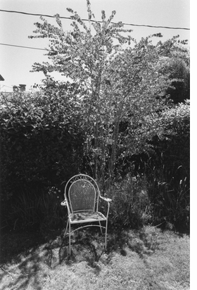 Featured image is reproduced from 'Robert Adams: Standing Still'.