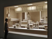Roxy Paine: The Dioramas
