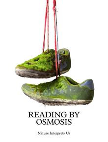 Sema Bekirovic: Reading by Osmosis