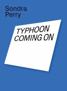 Sondra Perry: Typhoon Coming On