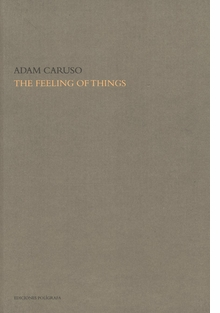 The Feeling of Things By Adam Caruso