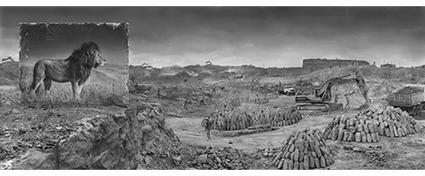 The Strand presents Nick Brandt on 'Inherit the Dust'