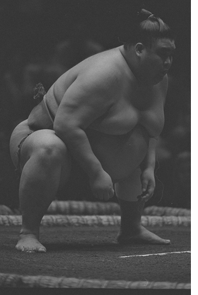 Featured image is reproduced from 'Tomasz Gudzowaty: Sumo.'