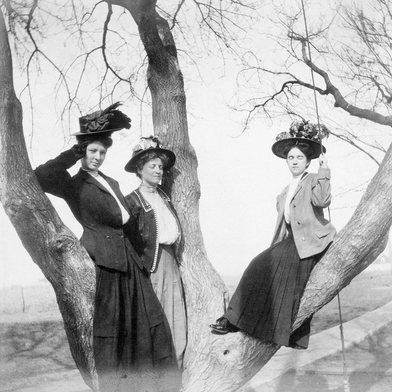 We salute the participants in this weekend's upcoming Women's Marches with 'More Women in Trees'