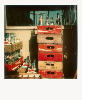Featured image is reproduced from 'William Eggleston: Polaroid SX-70.'