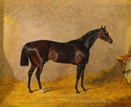 A Dark Bay Racehorse in a Stall painting reproduction, John Frederick Herring Sr.