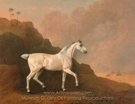 A Grey Arab Stallion in a Desert Landscape painting reproduction, John Boultbee