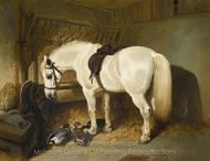 A Grey Pony in a Stable with Ducks painting reproduction, John Frederick Herring Sr.