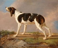 A Hunting Dog painting reproduction, Jacques Laurent Agasse