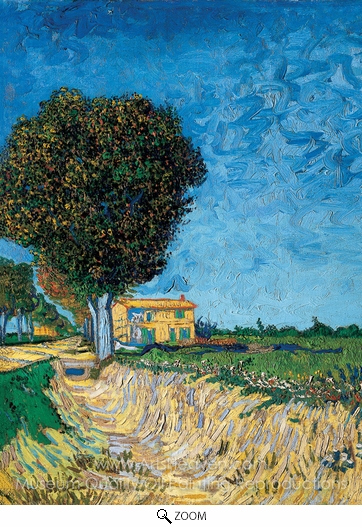 Vincent Van Gogh, A Lane Near Arles (Side of a Country Lane) oil painting reproduction