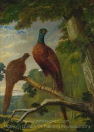 A Pheasant Cock and Hen painting reproduction, John Frederick Herring Sr.