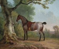 A Saddled Strawberry Roan Hunter, painting reproduction, Sawrey Gilpin