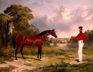 A Soldier with an Officer's Charger painting reproduction, John Frederick Herring Sr.