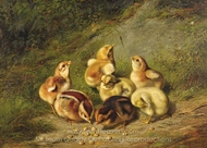 Baby Chicks painting reproduction, Arthur Fitzwilliam Tait