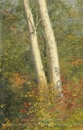 Birch Trees in Autumn painting reproduction, Frederic Edwin Church