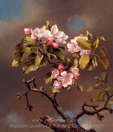 Branch of Apple Blossoms against a Cloudy Sky painting reproduction, Martin Johnson Heade