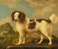 Brown and White Norfolk or Water Spaniel painting reproduction, George Stubbs