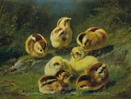 Chicks painting reproduction, Arthur Fitzwilliam Tait