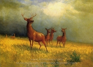 Deer in a Field painting reproduction, Albert Bierstadt