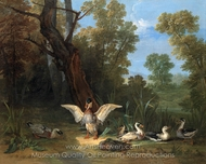 Ducks Resting in Sunshine painting reproduction, Jean-Baptiste Oudry