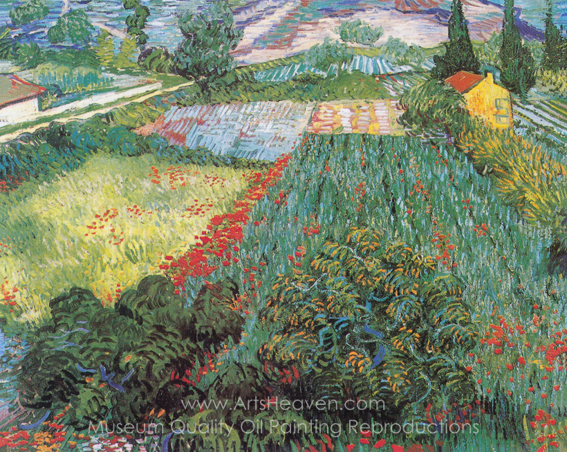 Reproduction Painting Vincent Van Gogh Field with Poppies, Hand ...