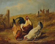 Fowls painting reproduction, Arthur Fitzwilliam Tait