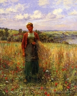 Gathering Wheat painting reproduction, Daniel Ridgway Knight