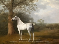 Gray Horse in the Meadow painting reproduction, Jacques Laurent Agasse