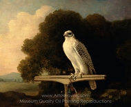 Greenland Falcon painting reproduction, George Stubbs