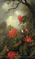 Hummingbird and Passionflowers painting reproduction, Martin Johnson Heade