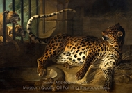 Leopard in a Cage confronted by Two Mastiffs painting reproduction, Jean-Baptiste Oudry