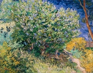 Lilac Bush painting reproduction, Vincent Van Gogh