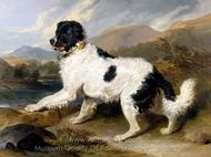 Lion, A Newfoundland Dog painting reproduction, Sir Edwin Landseer