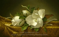 Magnolias on Gold Velvet Cloth painting reproduction, Martin Johnson Heade