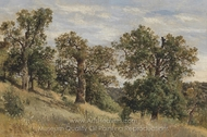 Mountain Slope with Tree painting reproduction, Theodor Von Hormann