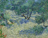 Olive Orchard painting reproduction, Vincent Van Gogh
