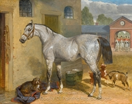One of the Scots Greys in a Yard with Dog and Goats painting reproduction, John Frederick Herring Sr.
