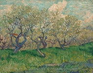 Orchard in Blossom painting reproduction, Vincent Van Gogh