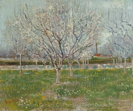 Orchard in Blossom (Plum Trees) painting reproduction, Vincent Van Gogh